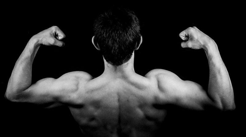 I 4 pilastri per costruire forza e massa muscolare